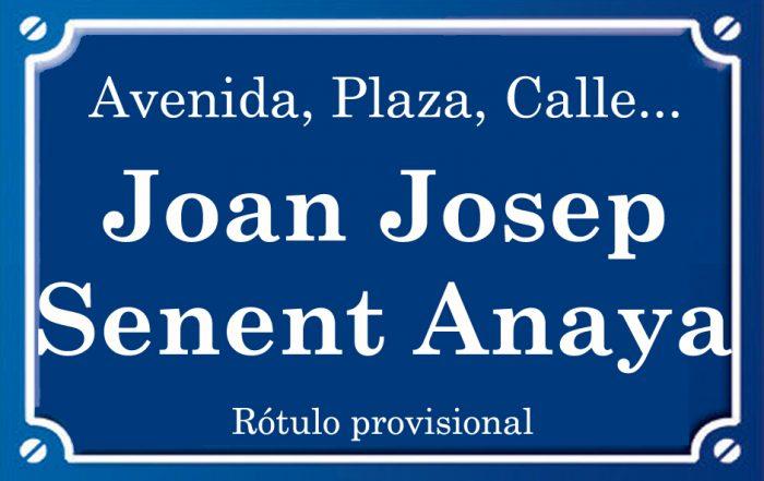 Joan Senent Anaya (calle)